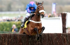 Cue Card out for the season with stress fracture