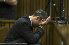 Friend says Pistorius fired gun out of car sunroof after fight with policeman