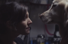 This heart-melting car advert will make any dog lover weep