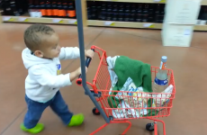 Dad takes toddler shopping for food. Toddler has other plans.