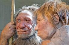Neanderthals made sure to eat their greens, ancient poo reveals